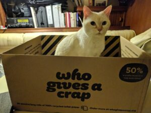 Cat in an empty Who Gives a Crap box